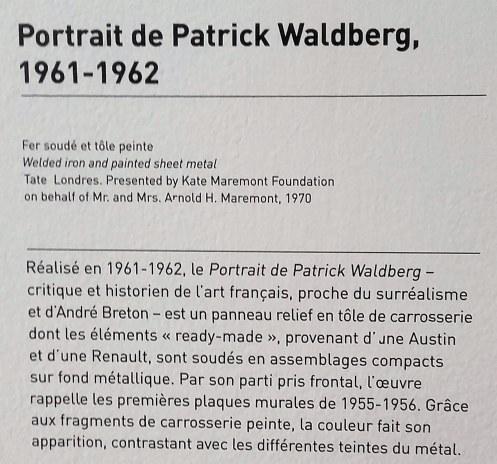 Portrait Patrick Waldberg